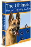 The Ultimate House Training Guide