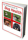 dog health