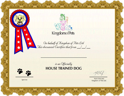 Cesky terriers price online dog training certificate for Dog show certificate template