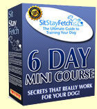 dog training books, Free 6 Day Course