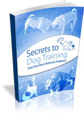 best-dog-training-books