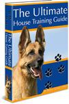 Dog House Training Guide